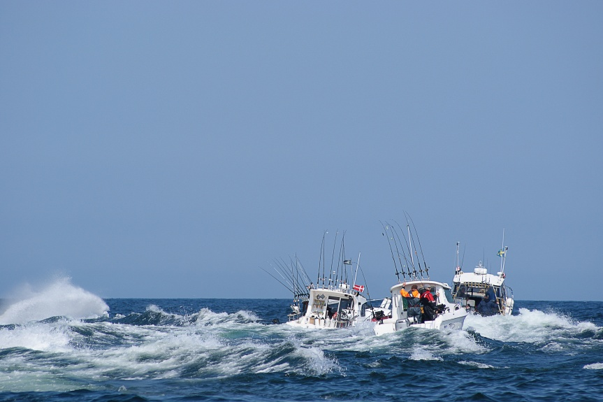10 Ways to Prevent or Address Sea Sickness While Out on your Florida Fishing Charter