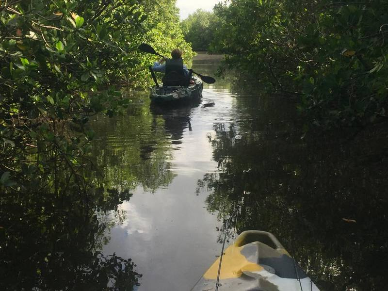 Kayak fishing - paddling through mangroves